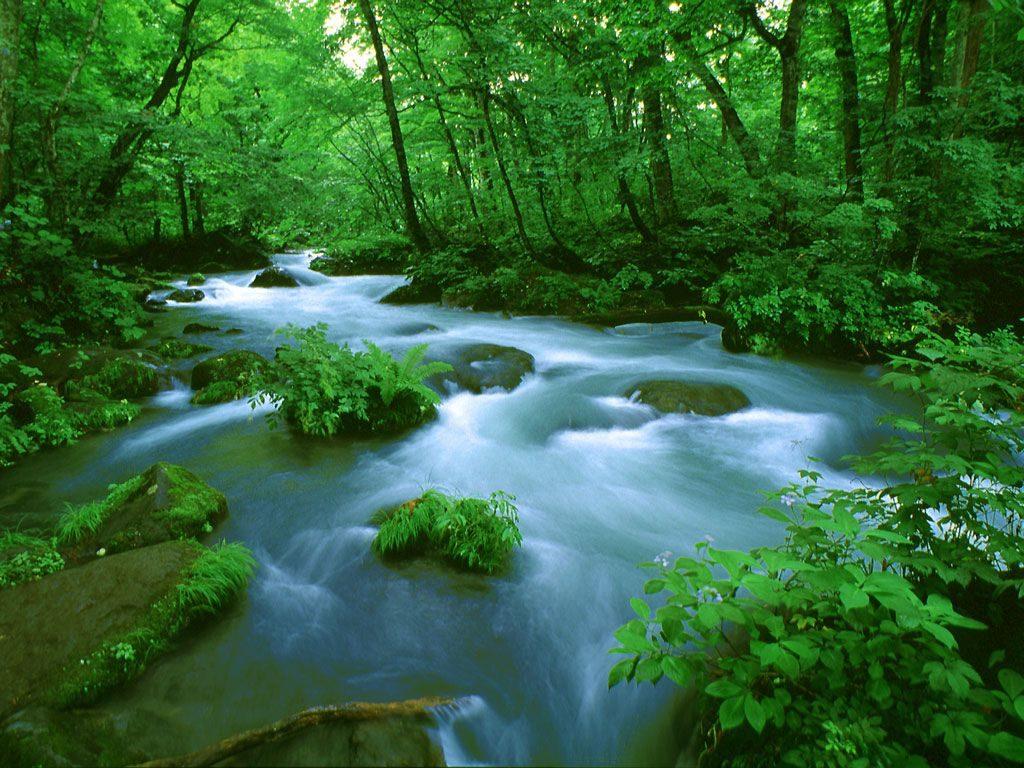 きれいな水が健康のもと