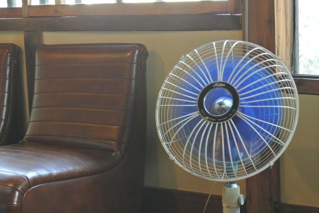 おすすめは扇風機の風で乾かす